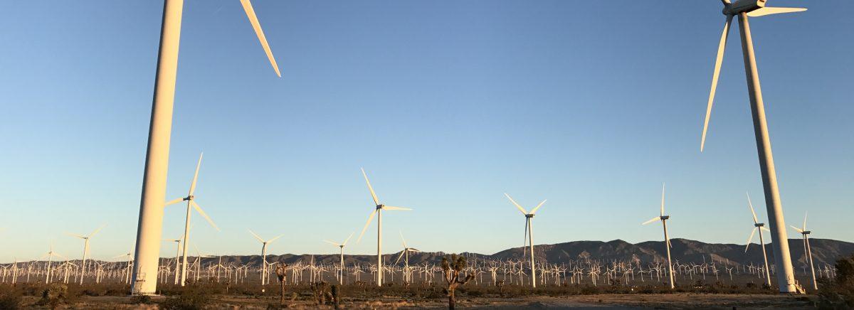 Living Cully Community Energy Plan